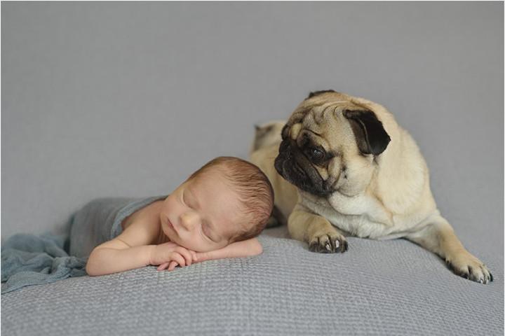 Fotografiranje novorojenčkov s Piko in Juretom ~ Bled