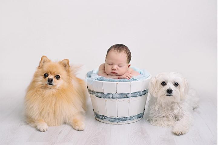 Fotografiranje novorojenčkov z Juretom in Piko ~ Lesce